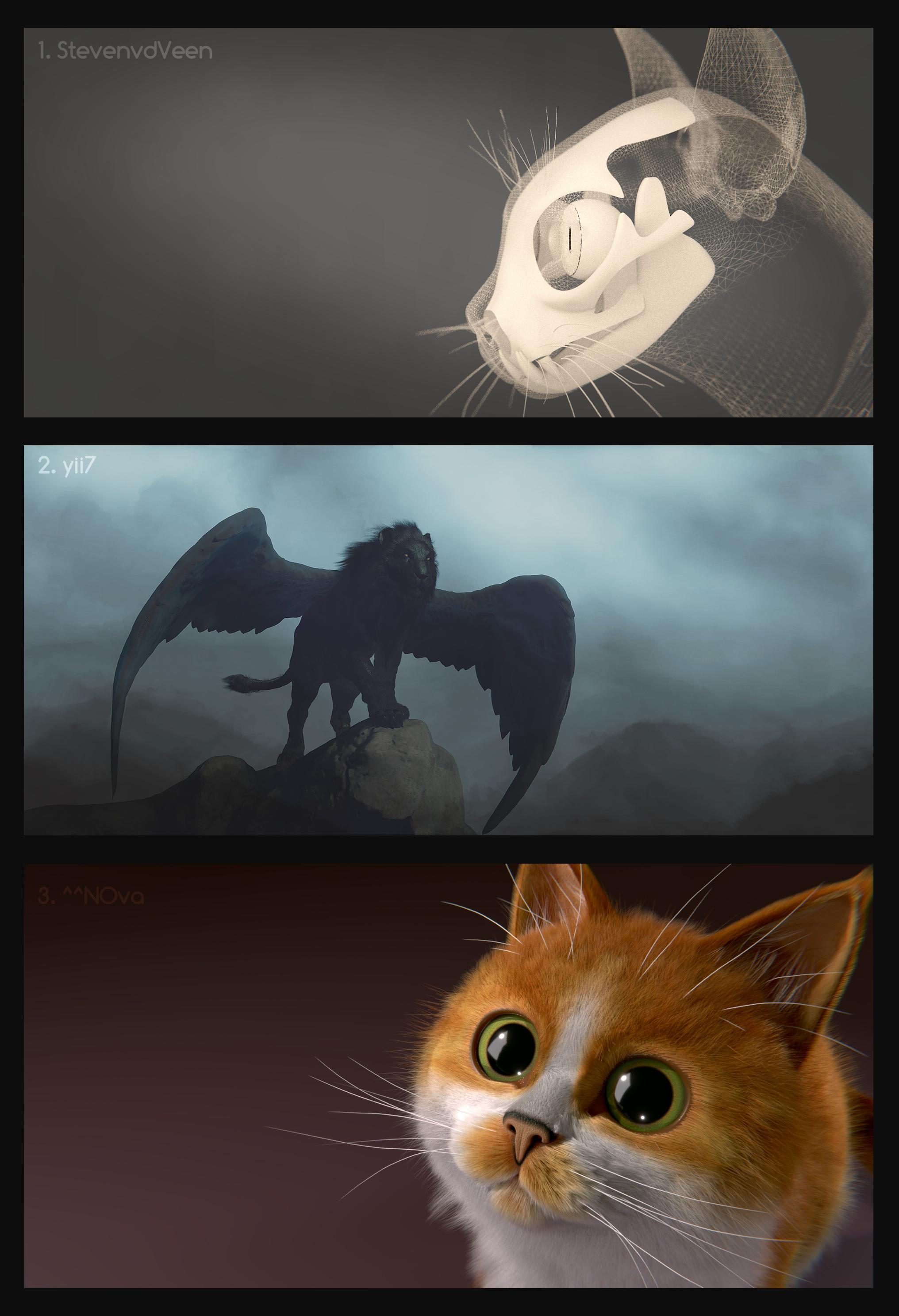 Kitty In A Blender ~ Index of eternal images forums blenderartists